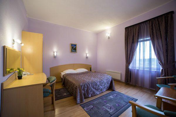 Гостиница Огни Мурманска. Отель в Мурманске, ресторан в гостинице, база отдыха у гостиницы, бассейн, аквапарк, проживание с животными.