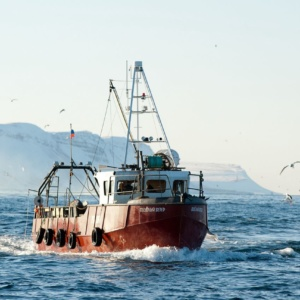 seafishing_01b[1]